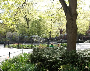 Stuyvesant Park Fountain